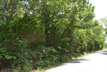 8/29/15 AUCTION: 9.43+/- ACRES IN DAVIDSON COUNTY / ZONED RS 7.5 SINGLE FAMILY Moss Road, Antioch, Tennessee - Davidson County Lots of road frontage, previously approved for 45 cluster lots, close to old Hickory Hollow Mall & I-24.   BID ONLINE or ON LOCATION Saturday, August 29th @ 10:01 AM Bidding has ended for this auction. Stay tuned for more upcoming auctions at http://www.comasmontgomery.com/  #realestate #auction #residential #land #acres #tract #davidson #county #nashville #antioch #tennessee #investment #property #development #interstate