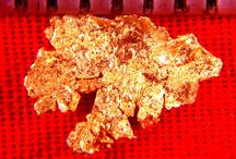 Rare Gold Nuggets & Specimens / Below you will see some of the finest examples of rare natural gold nuggets that you will find anywhere. You will see trigons and octahedrons, wire gold, hoppered gold nuggets, crystalline gold, plate gold, leaf gold, ribbon gold, sponge gold, and gold nuggets from Venezuela, Alaska, Australia, California, The Klondike, and other parts of Canada. To see Rare Gold Nuggets & Specimens for sale visit our website at: www.goldnuggetsales.com