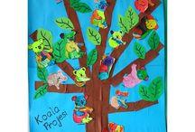 cuddly koalas / Young Nursery