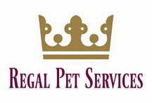 PSU Members / Pet Sitters and Dog Walkers you can find on our website Search