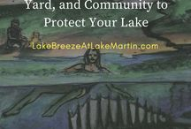 Tips for Lake Homeowners