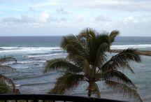 HAWAII / OREGON VACATIONS / HAWAII / OREGON / by Bernard Vivian
