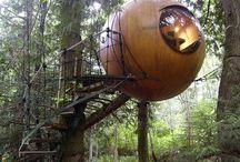 Sustainablity & Tree Houses