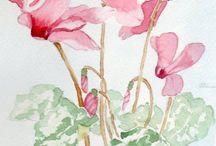 Il mistero dietro un fiore / come nasce il nome di un fiore e che storia c'è dietro