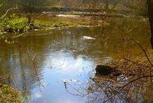 Dolina Symsarny / Park chronionego krajobrazu - przełom rzeki Symsarny