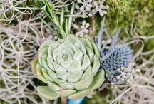 Boutonnières / Boutonnière floral design inspiration for weddings