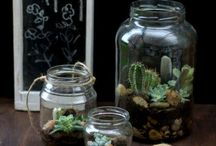reciclaje jarros cristal