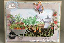 kaarten maken: tuin/natuur