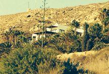 Almería / Desert, beaches, white sand, white villages, Palm trees, cactus.