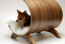 Fabulous Furry Finds / Cool pet products that deserve a Bow WOW! / by Breed Trust