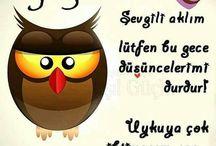 iyi geceler;)