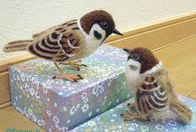 Skovspurv / Fugle