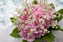 Hydrangea Flowers / Hydrangeas make a wonderful cut flower for wedding bouquets and floral arrangements because they're breathtakingly beautiful and a multitude of varieties provide a choice of shapes and colors. We hope this board will inspire all of the brides who want hydrangeas bridal bouquets for their weddings.