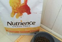 Nutrience Review! ‪#‎ad‬, ‪#‎NutriencePet‬ / Nutrience pet food review