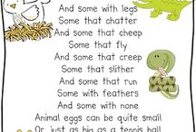 Pre Kinder Animals from Eggs / by Stephanie Aleck Cole