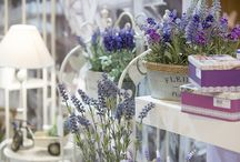 Jardín / ¿Tienes el jardín listo para compartir la primavera con amigos y familia? Os presentamos estos aires primaverales, también para decorar tu casa.