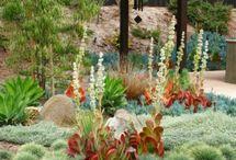 Ohana gardens