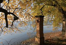 Herbst am See, #autumn, #lake