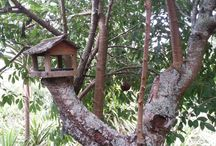 All things Woody / Wooden rustic elements of the garden