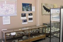 USU Geology Museum / Exhibits of meteorites, rocks, minerals, fossils and more in the Geology Building of Utah State University, Logan.