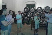 IGLTA visita Bodegas Salado /  EL DOMINGO PASADO MIEMBROS DE IGLTA (INTERNATIONAL GAY AND LESBIAN TRAVEL ASSOCIATION) VISITARON BODEGAS SALADO.