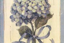 Paintings & Illustrations