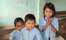 Nepali Tea Traders Cause