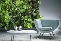 Флористика и фитодизайн / Флористический дизайн и растения в дизайне интерьера офиса и дома.
