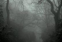 Dark, Nature and Gothic