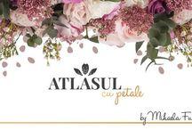 despre Atlasul cu petale