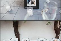 wedding idea's / by Gracie Doyle