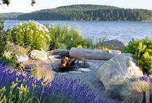 Northwest Coastal Landscape