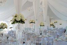 Wedding reception decor / by Theresa Masden