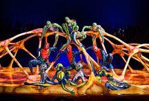 Cirque du Soleil / TOTEM- what a show!