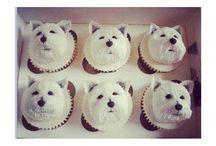 cupcake & cake
