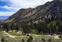 Camping near Bishop