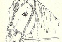 10-13th century horse gear