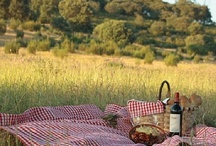 Picnics in the country