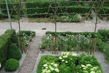 Tuin plannen