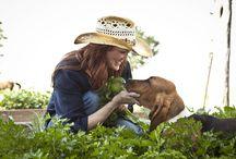 Food Blogs / by Ann King