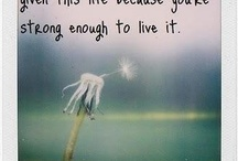 Quotes / by Lindsey Misamore