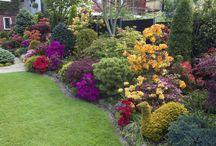 návrhy zahrad / návrhy zahrad