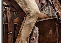 Pferde Fotografie