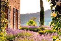 Umbria - Włochy