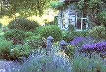 A garden to dream in