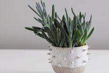 piante-vasi