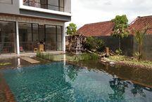 organic swimmingpool