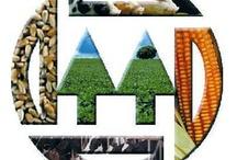 Articulos de Mutual Signia / Hablamos de construir colectivamente discursos y compartir recursos materiales con los medios de comunicación que tienen características y objetivos similares a Mutual Signia.