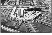 Bishopsfield Estate / M.Neylan 1963