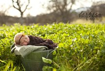 baby photography / by Brittany Cervantes